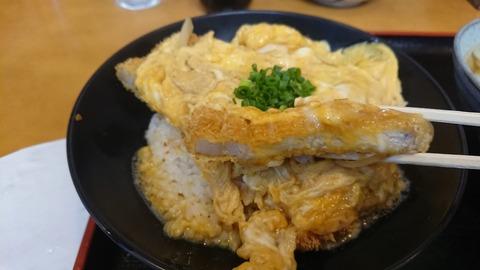 丸純カツ丼アップ