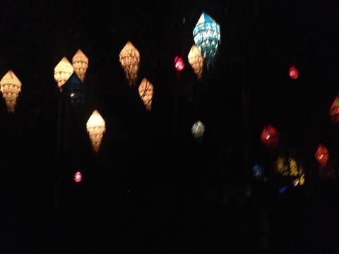 TAIRA CREWライト