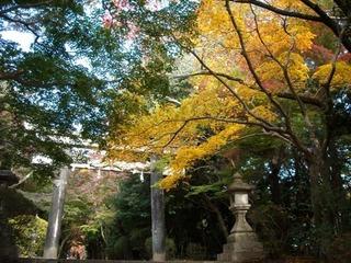 大原野神社1