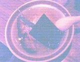 db3dbd14.jpg