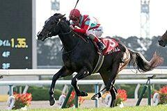 pic_horse2-18