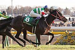 pic_horse2-43