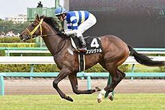 pic_horse4-10