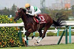 pic_horse4-26