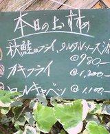 a9dc8179.jpg