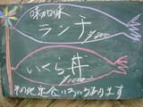 rsんち5.6−2