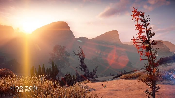 Horizon Zero Dawn™_ Complete Edition_20191107180339