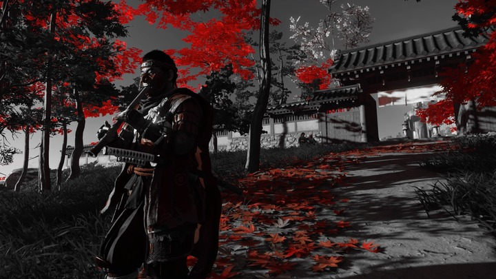 Ghost of Tsushima_20200805162438