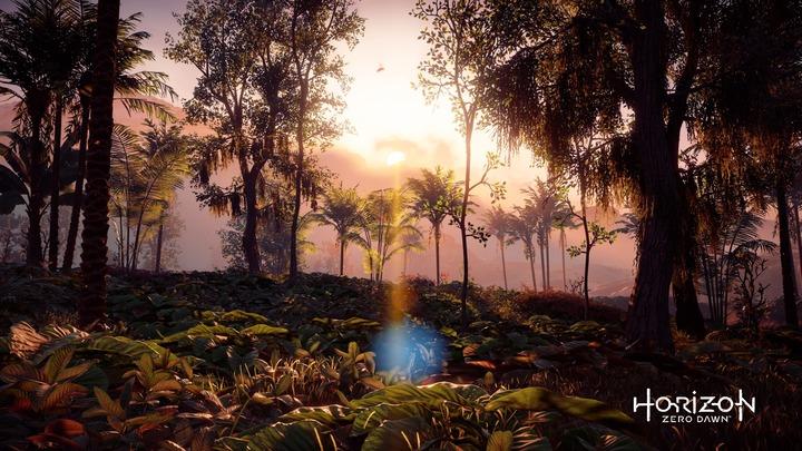 Horizon Zero Dawn™_ Complete Edition_20191107180144