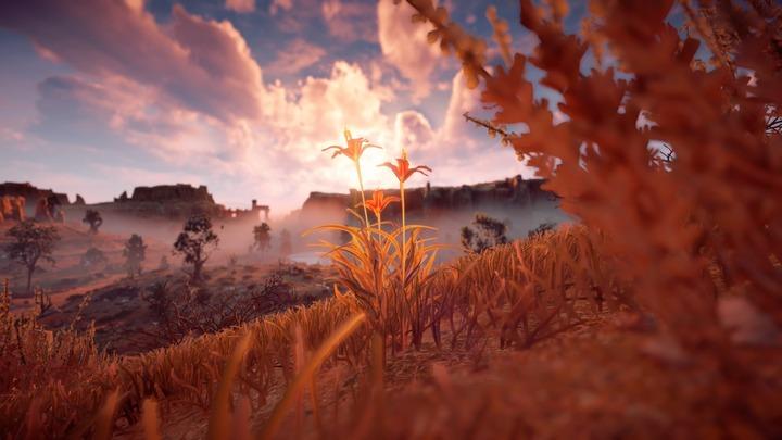 Horizon Zero Dawn™_ Complete Edition_20191018165459
