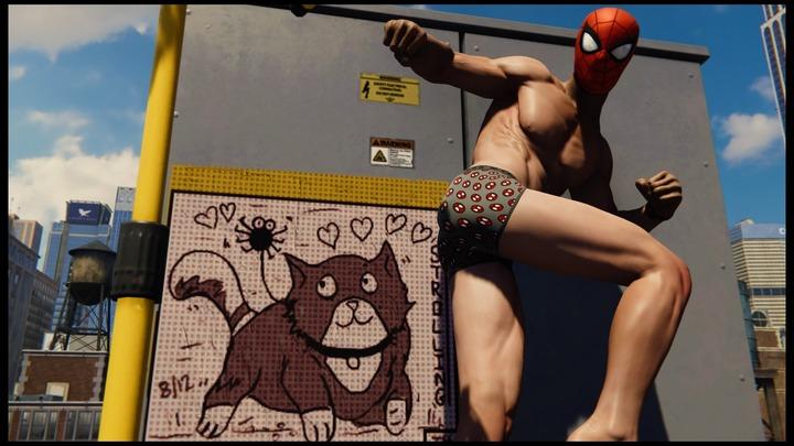 Marvel's Spider-Man_20190108112741