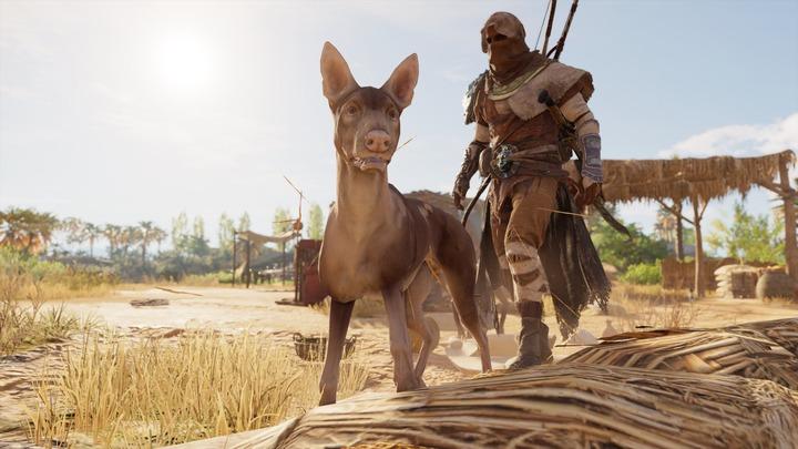 Assassin's Creed® Origins__103