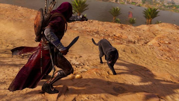Assassin's Creed® Origins__291