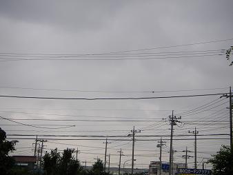 a3bdfb54.jpg