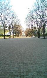 代々木公園。