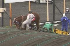 騎手が「馬の顔蹴る」動画が物議、ばんえい競馬「許される行為ではない」と処分へ