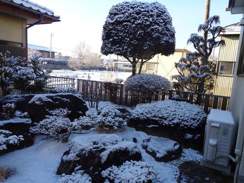 2020211初雪