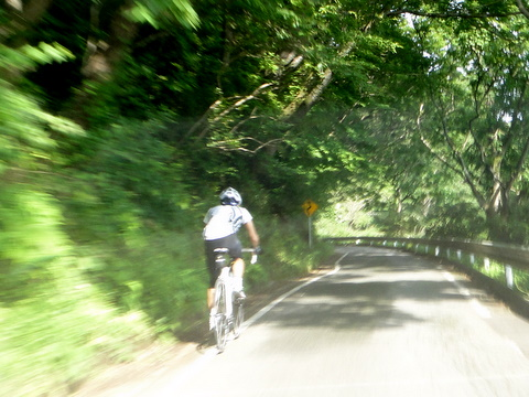 """e59930df2c 初めて筑波の不動峠を登りました。不動峠は今や、自転車乗りとってヒルクライムの""""聖地""""です。と言っても、自転車ではなく自動車で登ったのですが(笑)。"""