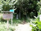 関さんの森1