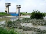 利根運河5