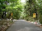 ゴミの道2
