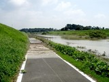 利根運河1