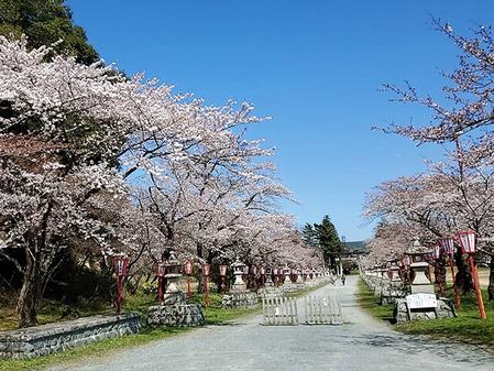 152_相馬中村神社、四季折々の姿