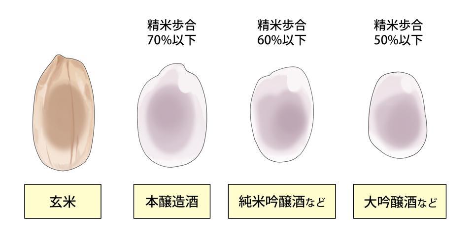 原料米の精米歩合