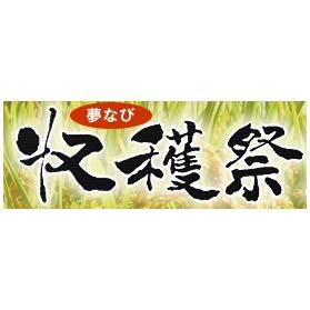 syukakusai_y