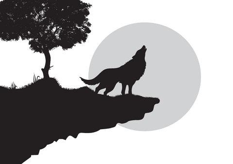 wolf-tattoo-2