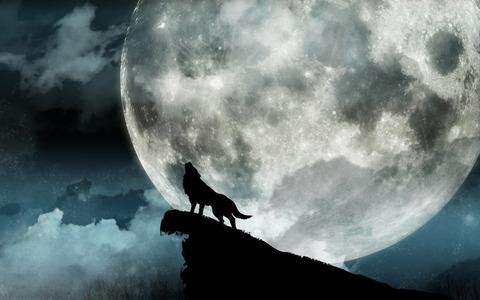 MoonAndWolf