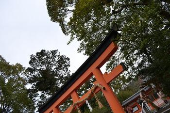 関西遠征 493
