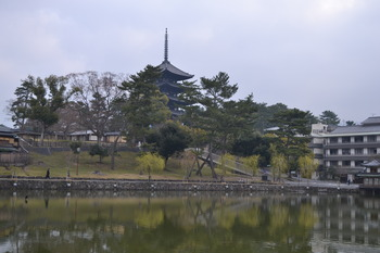 関西遠征 038