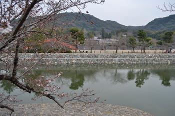 関西遠征 460