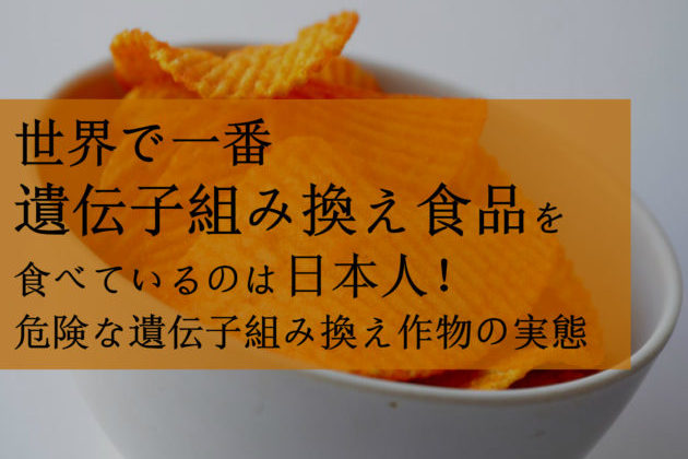 GMO 日本人