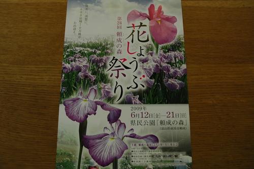 菖蒲祭り 砺波市 県民公園
