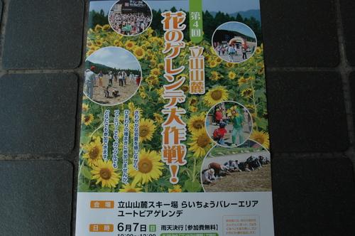 立山山麓 らいちょうバレー 富山市 花のゲレンデ大作戦
