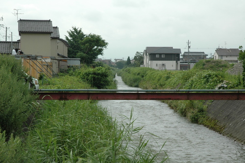 富山市 いたち川