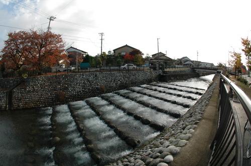 富山市 いたち川 どんどこ ドンドコ