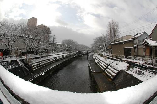 富山市 いたち川 雪 積雪