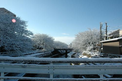 いたち川 富山市 2月 雪国