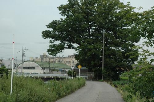 富山市 いたち川 地蔵