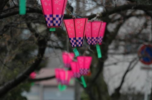 桜祭り 花見 富山市 いたち川