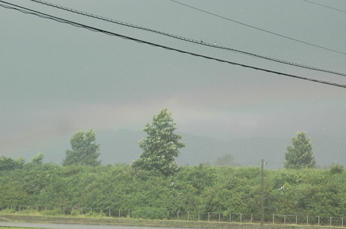 富山市 いたち川 虹