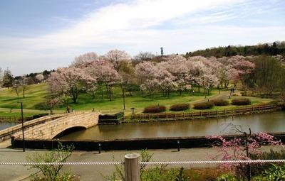 都市緑化植物園9
