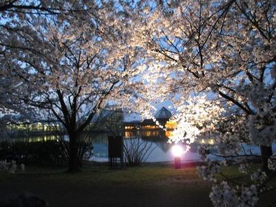 中央植物園12
