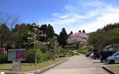 都市緑化植物園12