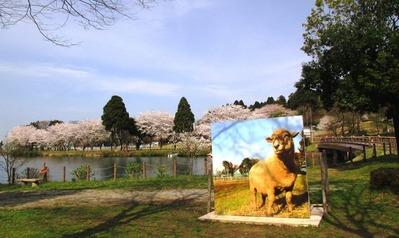 富山市ファミリーパーク4