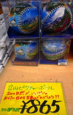 立山ピクチャーボール