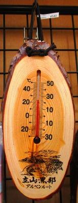 温度計 540円